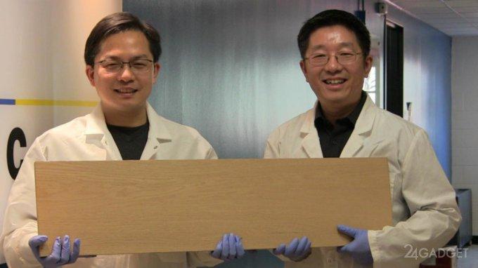 Новая древесина заменит титан и сталь (видео)