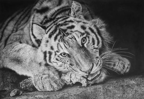 Моника Ли — фотореалистичные рисунки