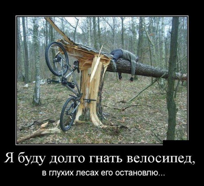 https://mtdata.ru/u27/photoE9B8/20972733417-0/original.jpg