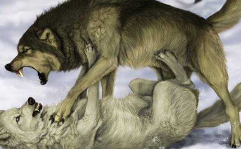 Мудрая притча про двух волко…