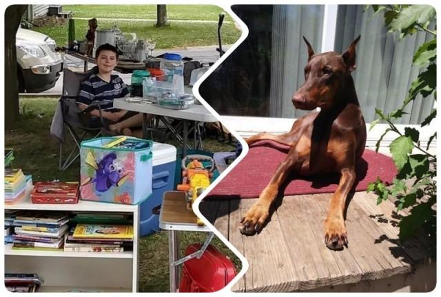 Его пес заболел и мальчик продал все свои игрушки, чтобы оплатить лечение питомца. Вот это дружба!