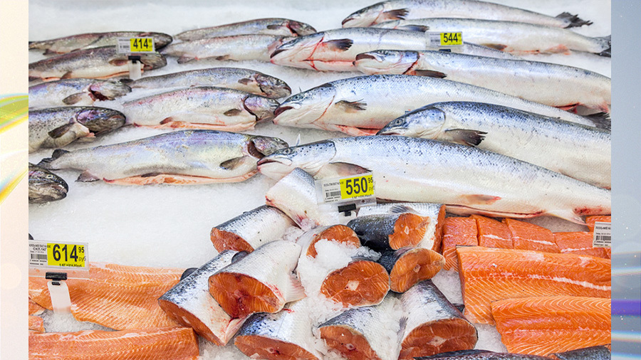 Как отучить россиян от займов? Когда решится вопрос навязанных кредитов? И какая рыба подешевеет?