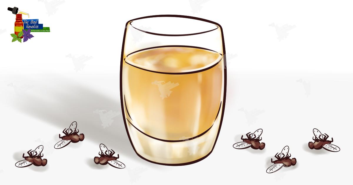 Это средство заставит забыть про комаров, мух, тараканов – уже через 2 часа от нечисти не будет и следа!