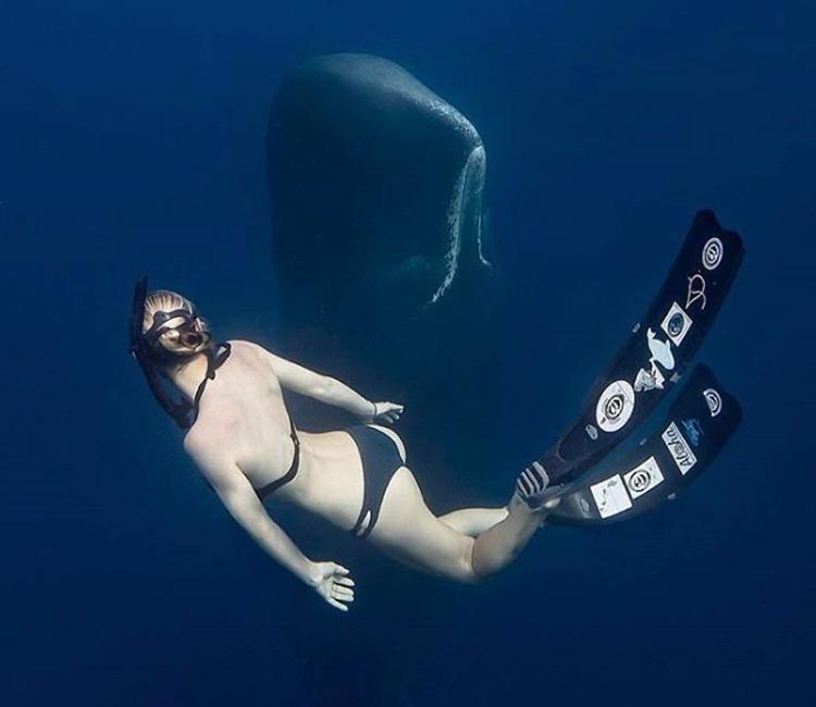 Фотографии, заставляющие до дрожи бояться моря акула,волны,море,озеро,океан,отпуск,Пространство,талассофобия