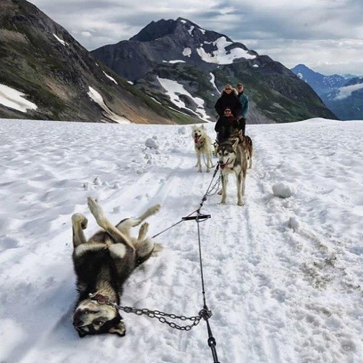 Как выглядит спущенное колесо на Аляске