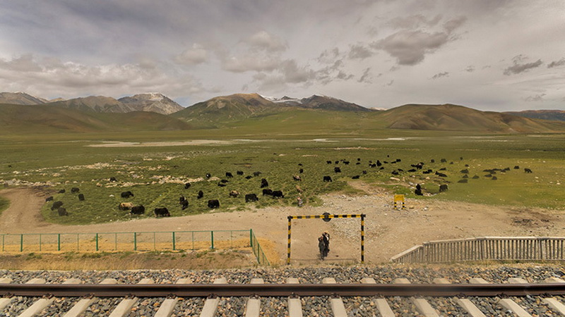 История строительства железной дороги в Тибет