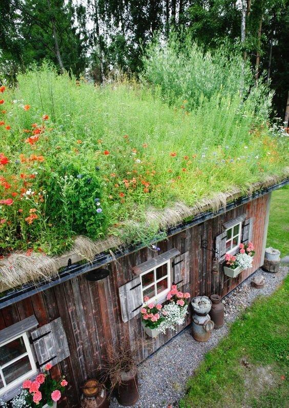 Зеленые крыши - дополнительное место для прогулок и посадки зелени для салата Материалы, Фабрика идей, интересное, красиво, крыши, необычное, стройка