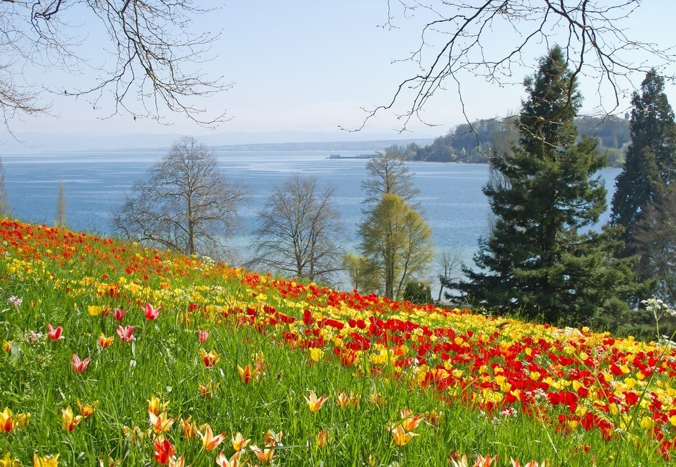 Боденское озеро: чудесное место для отдыха и туризма