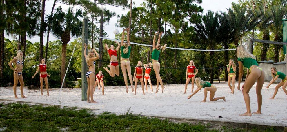 Красавицы волейболистки