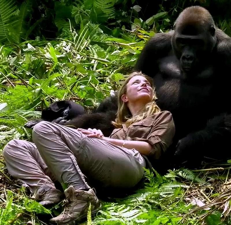 Миллионер-эколог познакомил жену со своей обезьяньей семьей