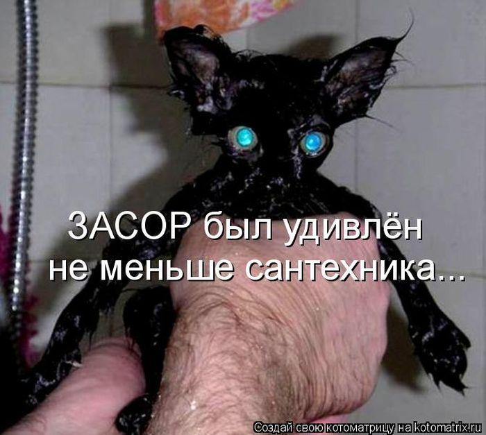 ПОЗИТИФЧИК  ДЛЯ  ДРУЗЕЙ!!!!!!!