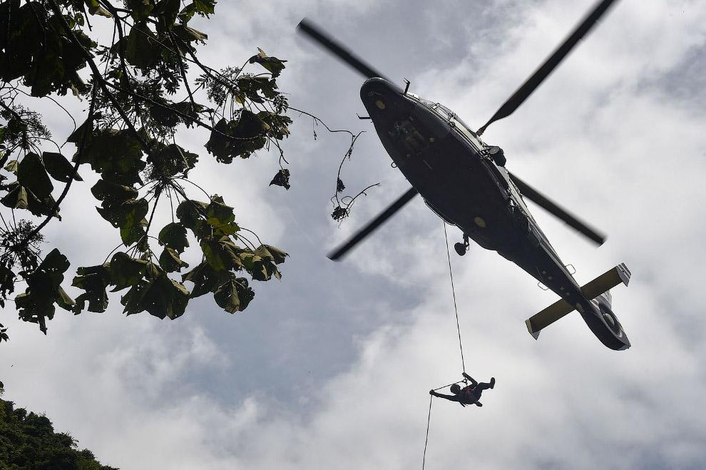 AFP_16V3AG