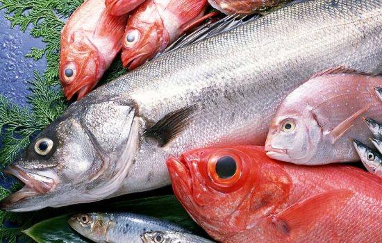 Картинки по запросу морская рыба