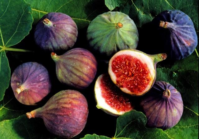 Инжир, плоды фигового дерева