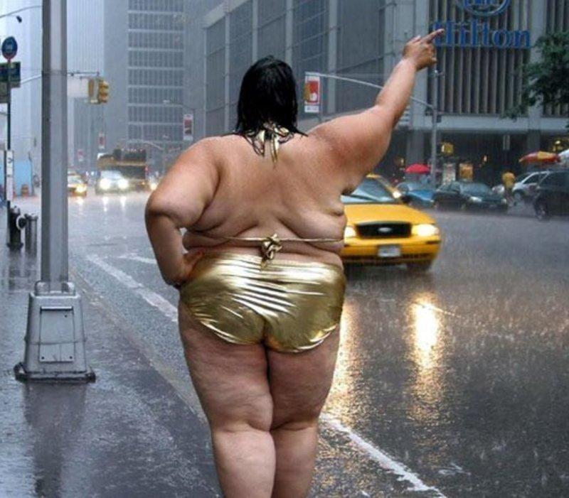 картинка толстуха у дороги - 5