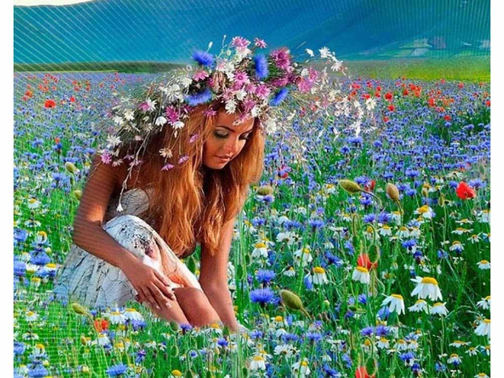 стихи здравствуй лето в ромашковом поле месяц июль