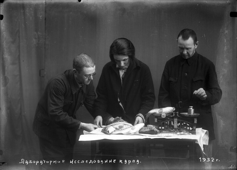 Для чего в СССР ввели рыбный день, и по какой причине им стал именно четверг еда,история,питание,рыбный день,СССР