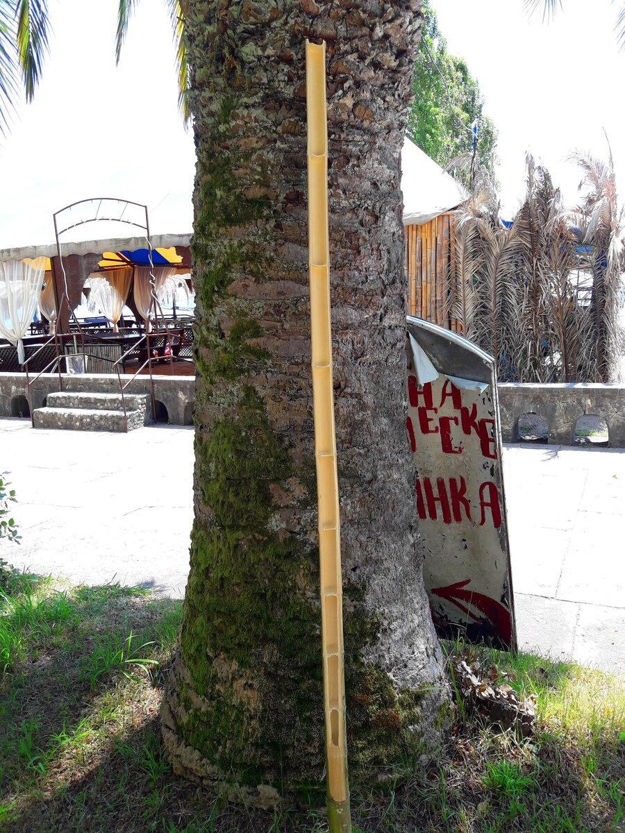 На пути попалось интересное здание, и посмотрели известный в советские годы фонтан. Абхазия