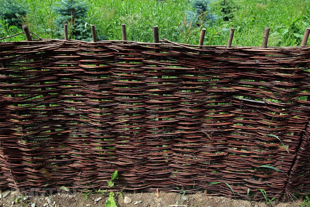 порвоо могли плетеный забор из веток своими руками фото сорок