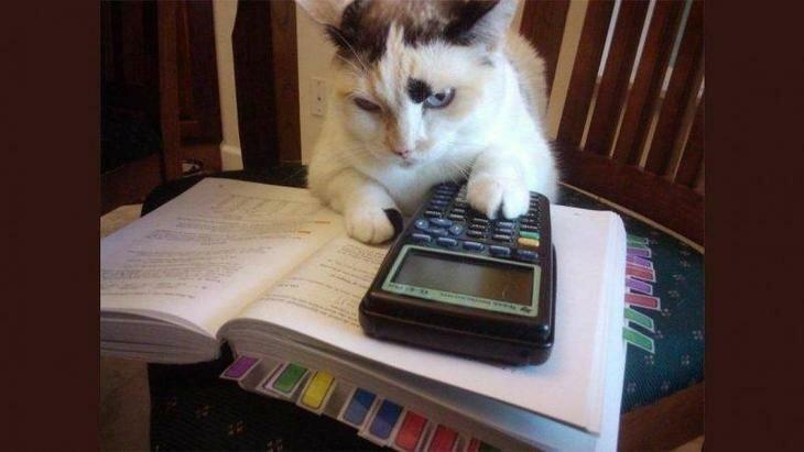 Когда понимаешь, что математика не твое настроение, позитив, юмор