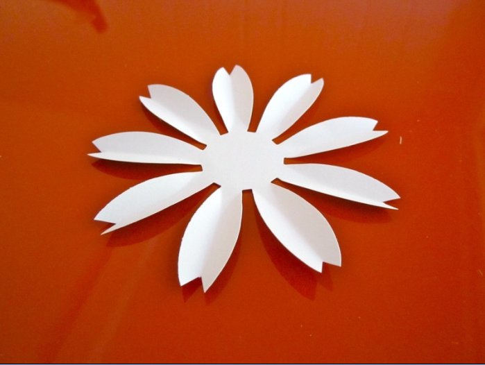Шаблон ромашки для акции белый цветок доставки украине