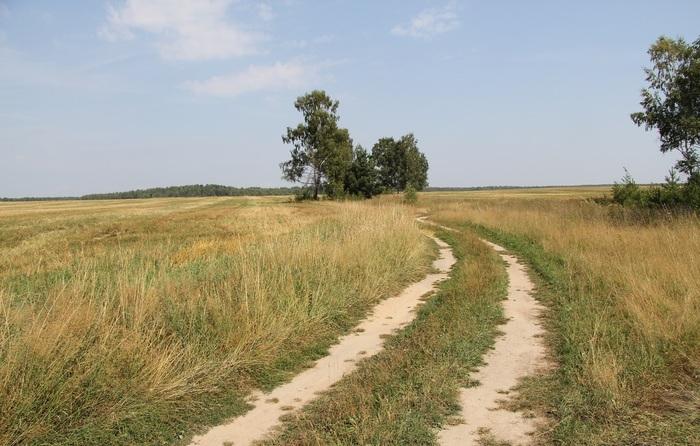 Деревенскими дорогами...