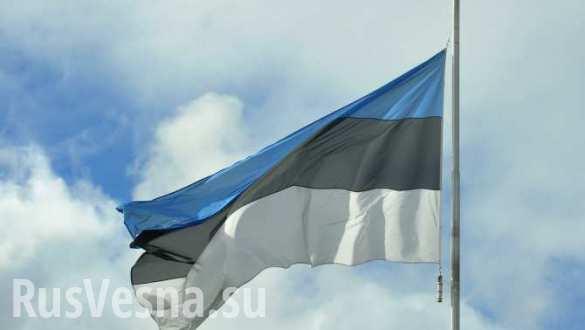 В Эстонии подсчитают ущерб от «оккупации», несмотря на заявление главы МИД   Русская весна