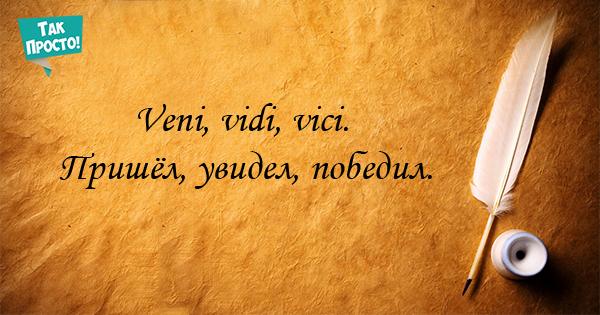Великая мудрость всего в паре слов: 14 крылатых афоризмов на латыни.