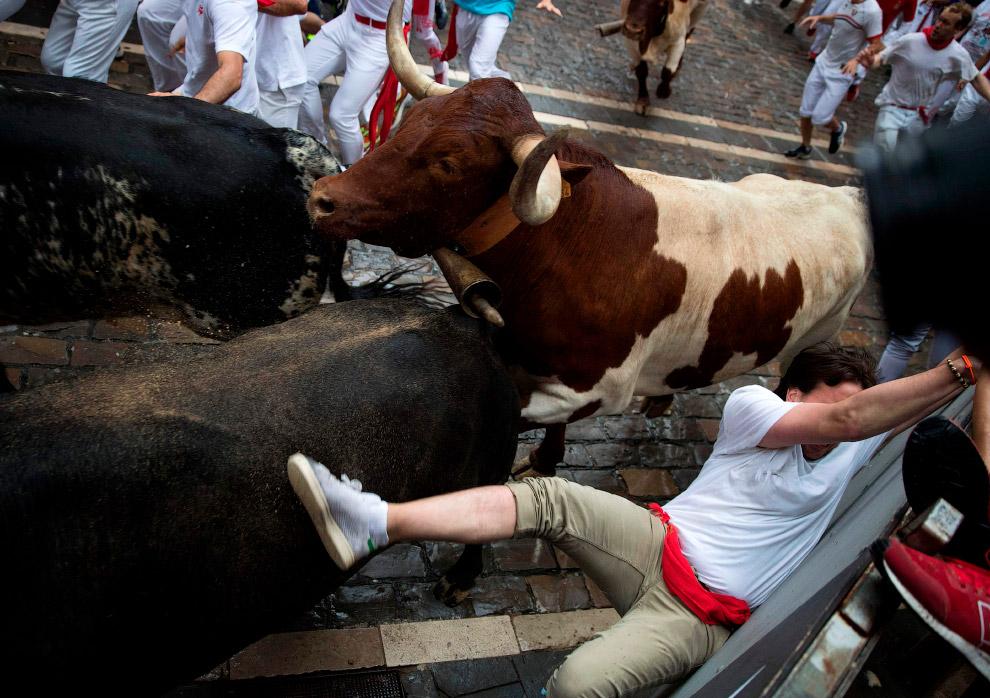 Бега быков: Сан Фермин 2018