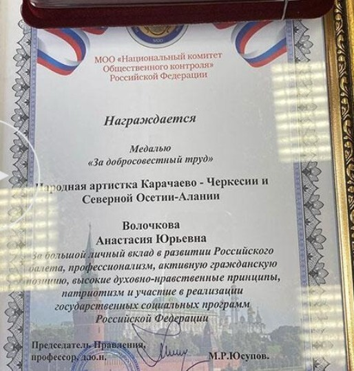 """Волочкову наградили медалью """"За добросовестный труд"""""""