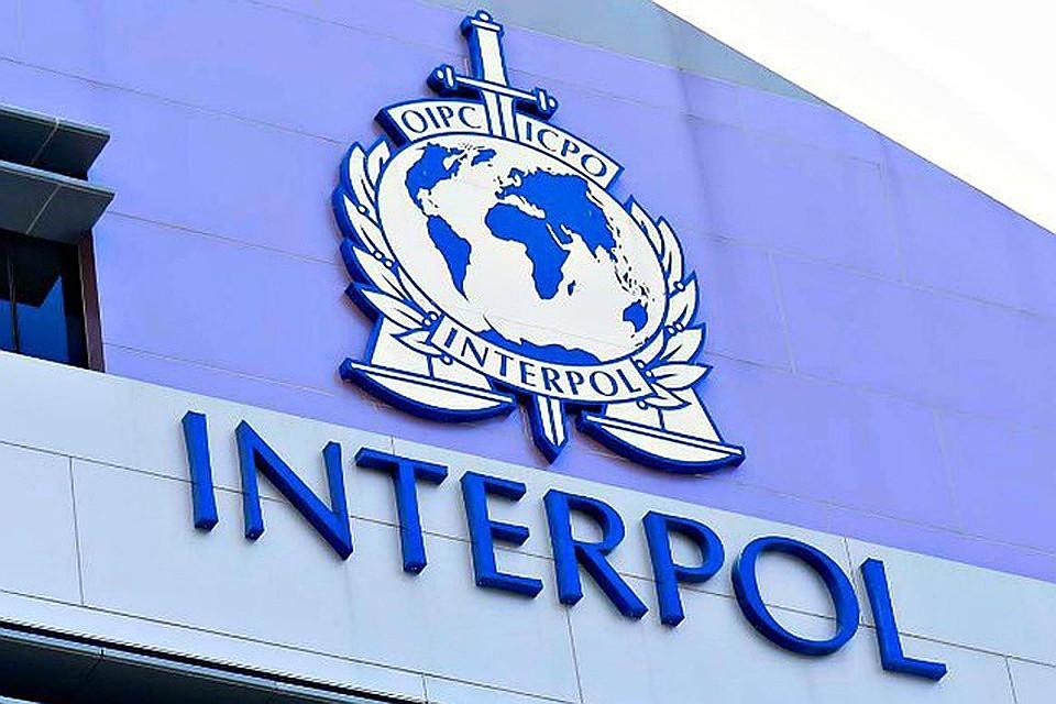 Картинки по запросу Интерпол