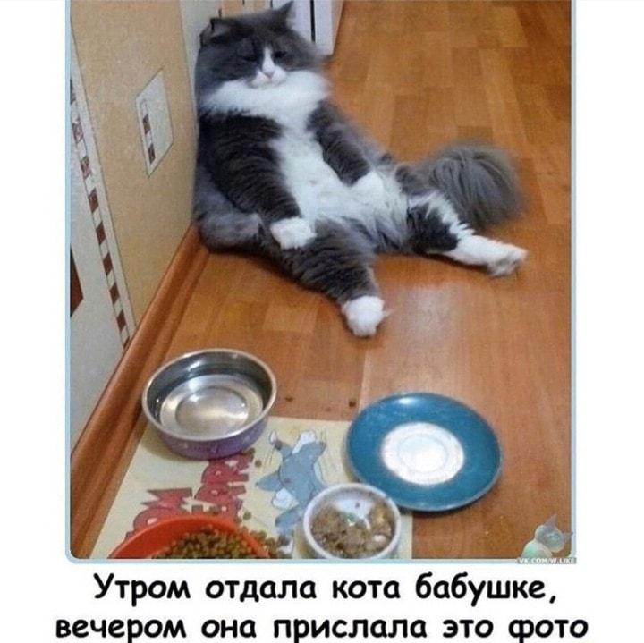 https://mtdata.ru/u28/photo542C/20618157153-0/original.jpeg#20618157153