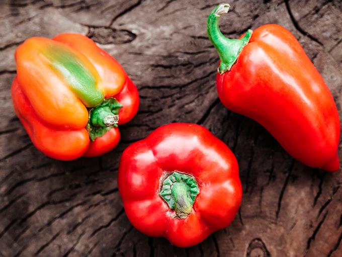 Как вырастить хороший урожай сладкого перца - Smak.ua