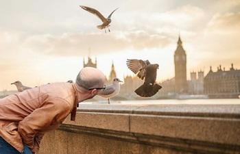 """""""Живы или нет, а может, ничего и не было"""": Лондон сообщил о состоянии Скрипалей"""