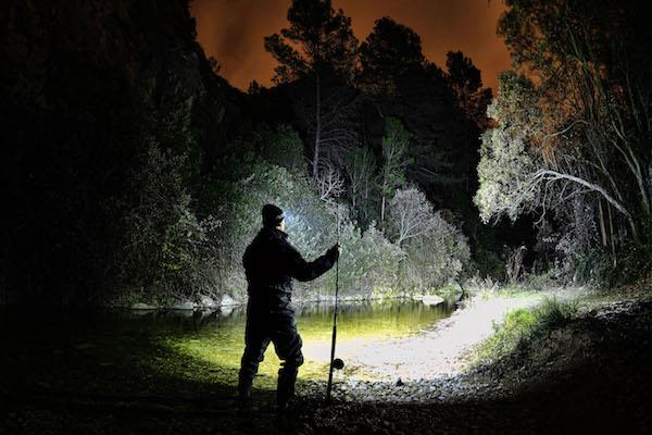 Ночная рыбалка полна плюсов