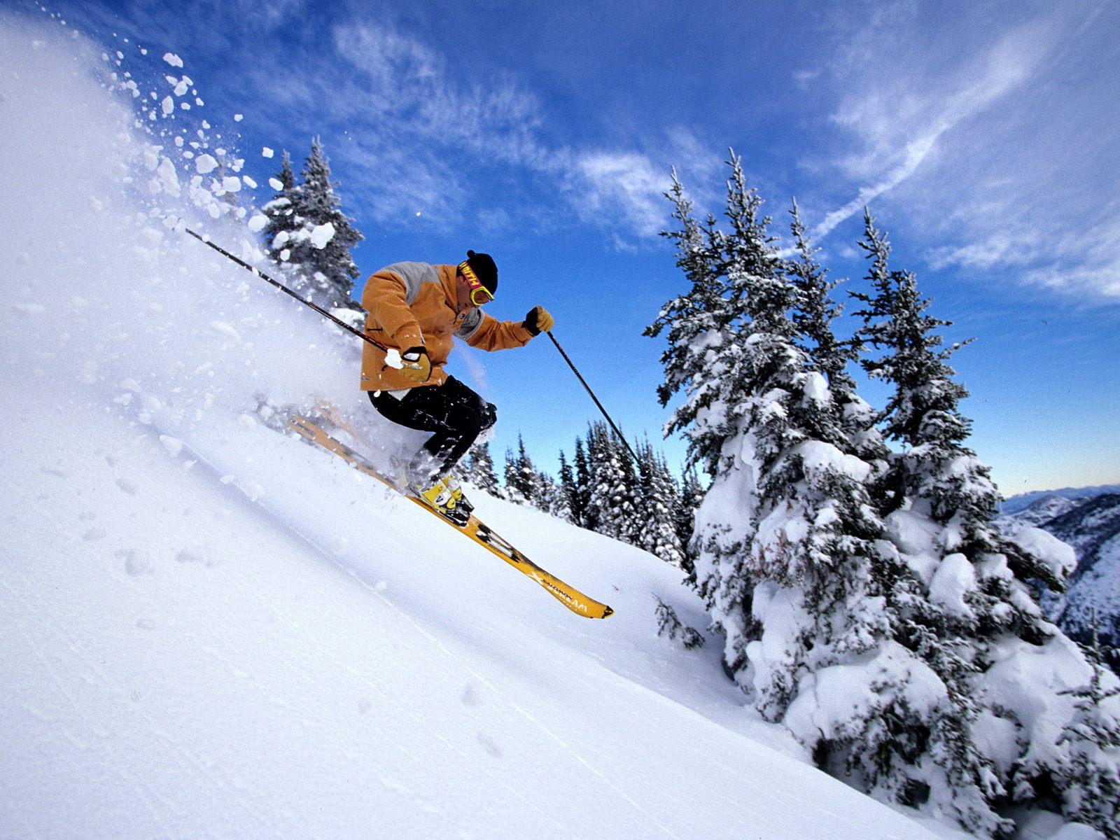 несколько горнолыжный спорт фото фабрика