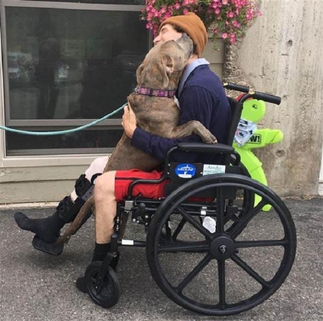 Парень с двумя собаками попал в страшную аварию и выжил чудом! Один из его питомцев погиб, а второй куда-то исчез… истории из жизни