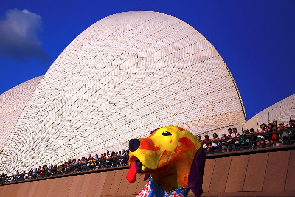 Символ года в Сиднее, Австралия