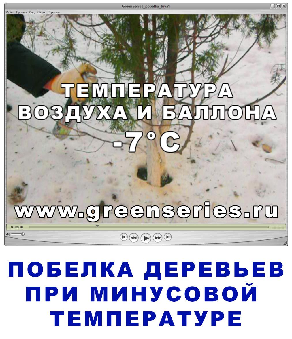 Защита стволов деревьев от солнечных ожогов ранней весной.