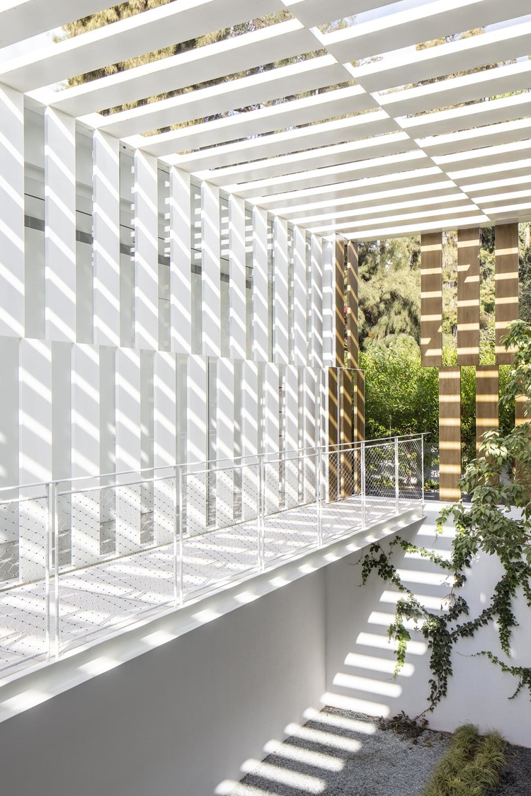 Необычный интерьер дома с двухэтажным садом в Израиле