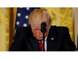 American Conservative: Трампа, по сути, отстраняют от власти?