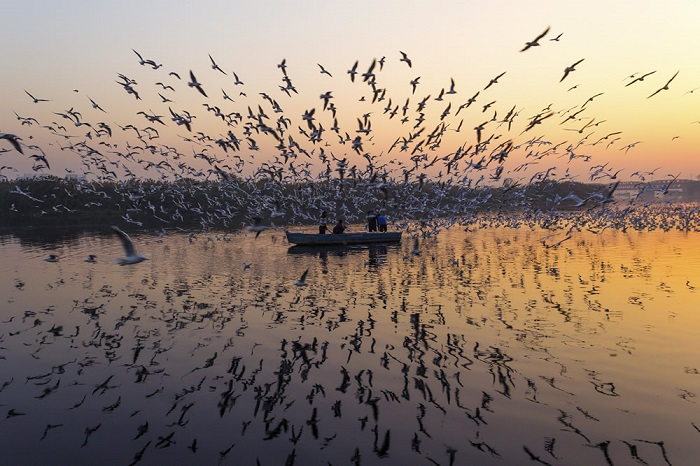 Индийский фотограф Джей Тхакур (Jai Thakur) из Дели создал серию снимков, посвященных реке Джамна.