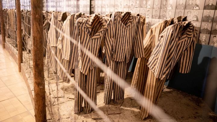 """""""Освенцим освободился сам собой"""": """"Дешёвка"""" Пенс опозорился в Израиле – публицист"""