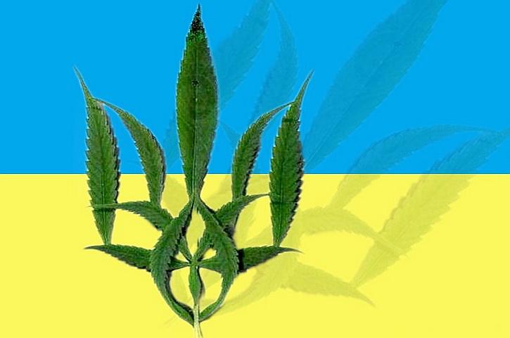 Украина идёт к легалайзу