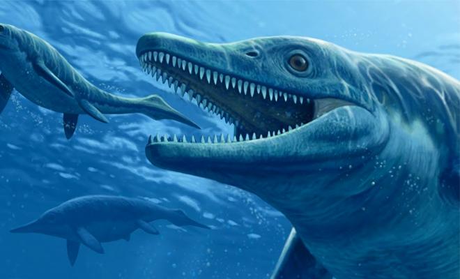 Ученые нашли следы подводного животного размером более 30 метров археология,динозавр,ихтиозавр,наука,океан,Пространство,раскопки