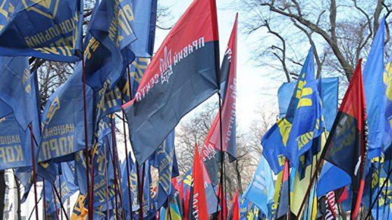 В Киеве националисты провели акцию протеста возле здания патрульной полиции