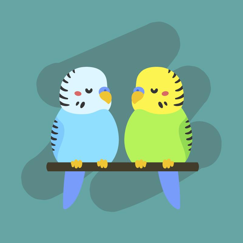 Попугаи и собеседники