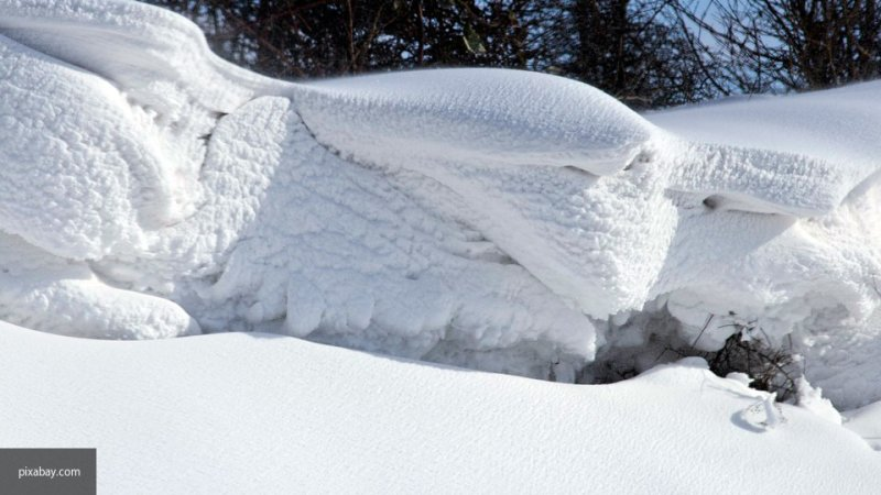 Режим ЧС ввели в Новосибирске из-за снега
