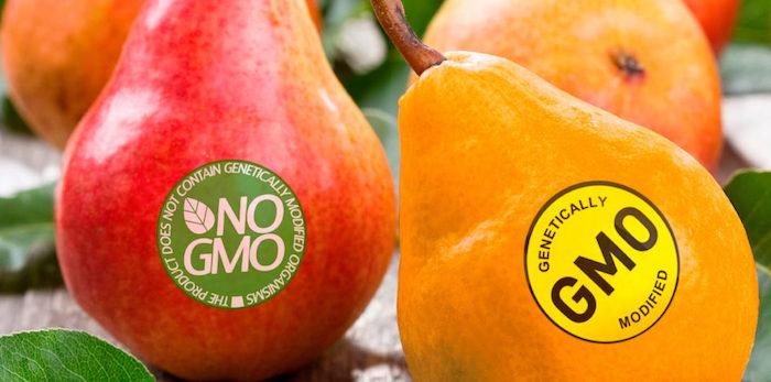 Что никогда не стоит покупать: ГМО.