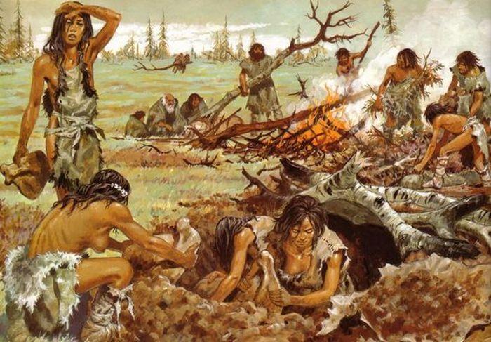Как вели домашнее хозяйство, выбирали партнёров и лечились женщины в каменном веке?